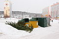Disposed New Year trees in Tomsk.JPG