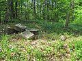 Dixon Cemetery Helena AR 006.jpg
