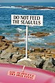 Do not feed the seagulls ...... - geograph.org.uk - 450100.jpg
