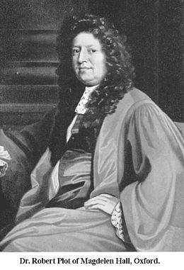 Dr Robert Plot of Magdelen Hall Oxford.jpg