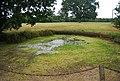 Dried out pond, Wyphurst Home Farm - geograph.org.uk - 2097843.jpg