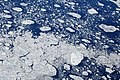 Drift ice in Hudson Strait 032.jpg