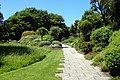 Dunedin Botanic Garden kz14.jpg