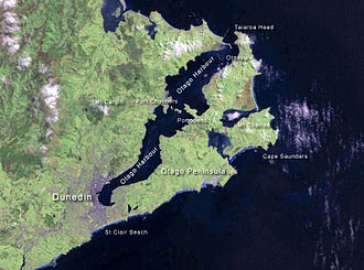 Otago Harbour - NASA satellite photo of Otago Harbour and Peninsula.