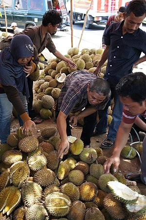 Durian - Durian on sale near Cirebon, Indonesia