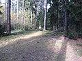 Dusetų sen., Lithuania - panoramio (122).jpg