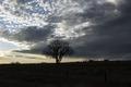 Dusk in Sedgwick County, near Julesburg, Colorado LCCN2015633075.tif
