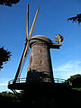 Dutch Windmill Golden Gate Park.jpg