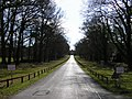Easthampstead Park drive - geograph.org.uk - 1219248.jpg