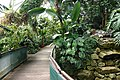 Essen Grugapark Botanischer Garten Pflanzenschauhäuser 03.jpg