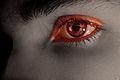 Eye (3056928103).jpg