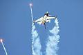 F16 - RIAT 2006 (2401202441).jpg