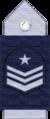 FACH Sargento 1°(hombro).png