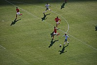 FIFA World Cup 2010 Argentina South Korea3.jpg