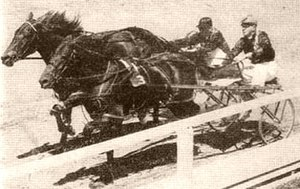 False Step - False Step (inner) defeats Glint in the 1955 NZ Derby Stakes.