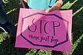 Families Belong Together - San Rafael Rally - Photo - 9 (42223668674).jpg