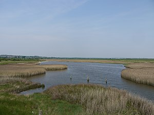 Farlington Marshes - The view across part of the marshes