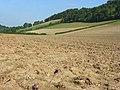 Farmland, Slough Bottom - geograph.org.uk - 988460.jpg