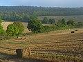 Farmland, Stokenchurch - geograph.org.uk - 1013292.jpg