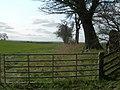 Farmland and trees near Eccles - geograph.org.uk - 382828.jpg