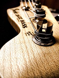 Fender jazz bass vertical.jpg