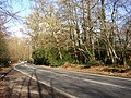Fernhill Road, Hawley, Hampshire - geograph.org.uk - 112789.jpg