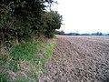 Field alongside disused Oakham canal - geograph.org.uk - 1000009.jpg