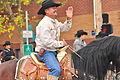 Fiestas Patrias Parade, South Park, Seattle, 2015 - 290 - the horses (21406431970).jpg