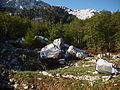 Findlinge in der Bijela gora Orjen.JPG