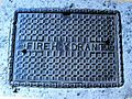Fire.hydrant.cover.in.kofu.city.jpg