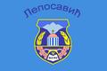 Flag of Leposavic.png