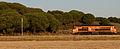 Flickr - nmorao - Locomotiva 1900, Alcácer, 2008.12.16.jpg