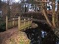 Footbridge over small weir - geograph.org.uk - 709195.jpg