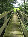 Footbridge over the River Leadon - geograph.org.uk - 938454.jpg