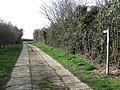 Footpath - geograph.org.uk - 1765821.jpg
