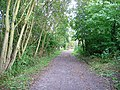Footpath following disused railway track - geograph.org.uk - 1004009.jpg