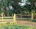 Footpath gate east of Broadwell - geograph.org.uk - 1250573.jpg