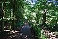 Footpath in Montreal Park - geograph.org.uk - 2621597.jpg
