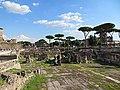 Foro Traiano - panoramio (3).jpg