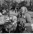 Fotothek df ps 0004066 Handel ^ ambulanter Handel ^ Straßenhändler.jpg