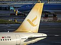 Freebird Airlines A320 (TC-FBH) Gold tail color at Amsterdam Airport Schiphol (EHAM) - 3.jpg