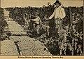Fresno County, Cal (1904) (14760854986).jpg