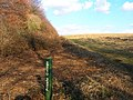 Friston Hill - geograph.org.uk - 132038.jpg