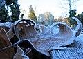Frost in the community garden (23645657942).jpg