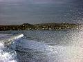 Galapagos2007--45--08-23-07.JPG
