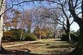 Garden Serralves (11).jpg