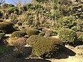 Garden of Former Residence of Nabeshima Family in Kojirokuji Area 6.jpg