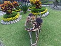 Garden of Iron Palace in Orizaba, Veracruz.jpg