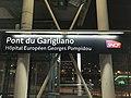 Gare RER Pont Garigliano Paris 4.jpg