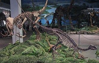Zigong Dinosaur Museum - Dinosaurs at the Zigong Dinosaur Museum